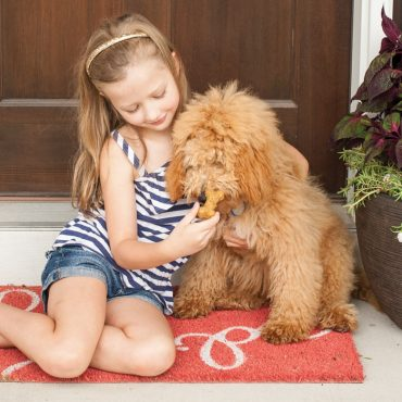 Girl giving treat to dog
